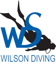 Wilson Diving – Scuba and Snorkel Centre, Scuba Diving Lessons